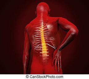 douleur, figure, dos, mis valeur, numérique, rouges