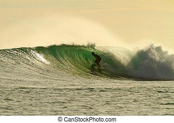 dourado, brilho, surfista, em, espantoso, tubo