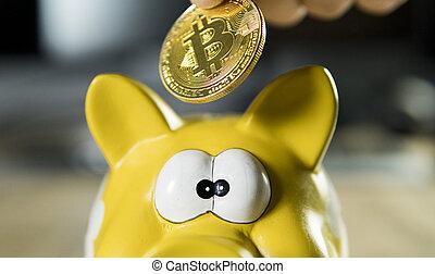 dourado, dinheiro, dinheiro., cryptocurrency, computador, btc, eletrônico, investimento, teia, rede, payment., concept., bitcoin, virtual, experiência., operação bancária, símbolo, mão, pôr, banco moeda, caixa, piggy