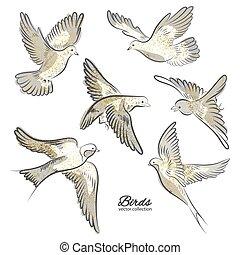 dourado, jogo, illustration., isolado, mão, experiência., vetorial, desenhado, faíscas, branca, pássaros