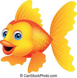 dourado, peixe, caricatura