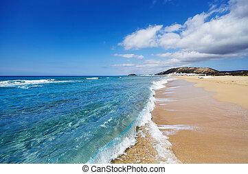 dourado, praia, karpas, península, norte, chipre