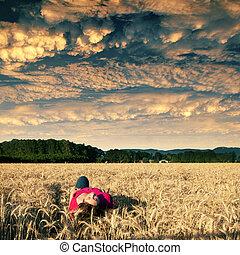 dourado, solidão, campo