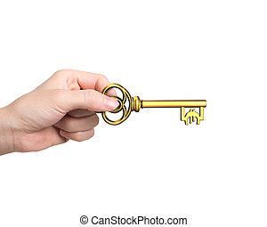 dourado, tecla, símbolo, tesouro, mão, forma, segurando, euro