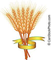 dourado, trigo, fita, orelhas
