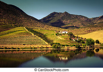 Beautiful landscape of the Douro Demarcated Region, in Portugal, UNESCO World Heritage