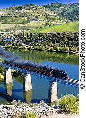 douro, train, vallée, vapeur, portugal