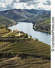 douro, vallée, rivière