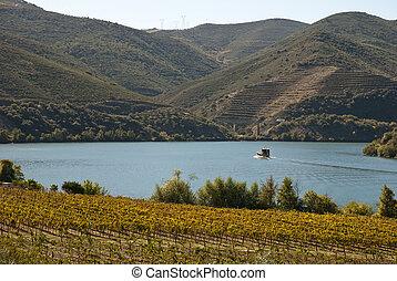 douro, vignobles, vallée rivière, portugal