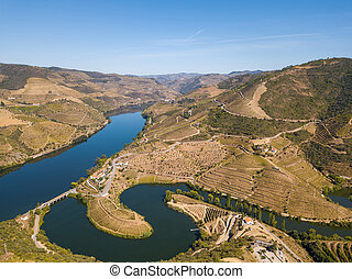 Douro wine valley region, Portugal. Vineyards landscape tourist attraction and travel destination. Drone aerial top view of s shaped bend river.