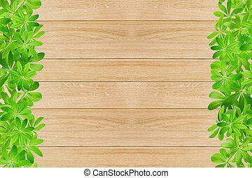 doux, feuilles, woodruff, cadre