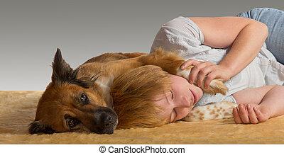 doux, paisible, chien, sommeil