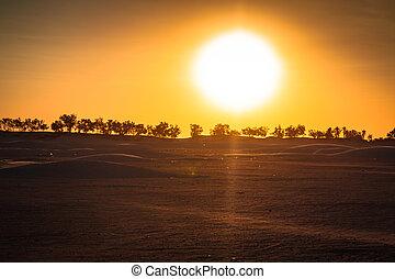 douz, tunisia., -, sáhara, ocaso, desierto