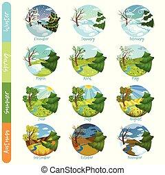 douze, hiver, printemps, nature, ensemble, mois, quatre, automne, vecteur, paysage, année, illustrations, saisons, été