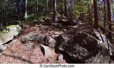 dovbush, trail., montagnes., ukraine., carpathian