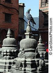 Dove and stupas