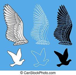 Dove bird wings set