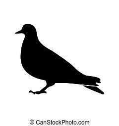 Dove black color icon .