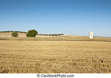 Dove cote in an agrarian landscape in Ciudad Real Province,...