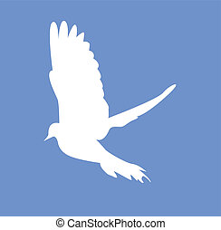 Dove flying illlustration
