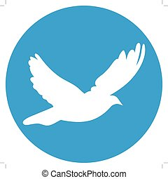 Dove for peace concept and wedding design. Flying dove white on a blue background.