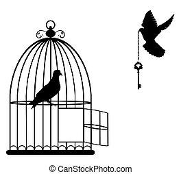 dove free