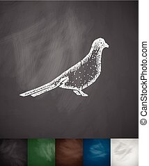 dove icon. Hand drawn vector illustration. Chalkboard Design
