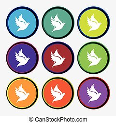Dove icon sign. Nine multi colored round buttons. Vector