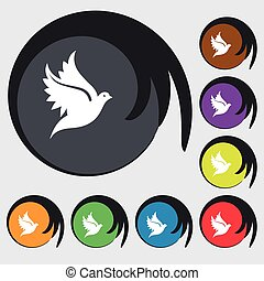 Dove icon sign. Symbol on eight colored buttons. Vector