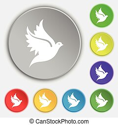 Dove icon sign. Symbol on five flat buttons. Vector
