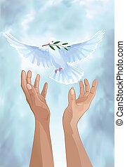 dove of peace - Dove of Peace. White dove in the sky. Dove ...