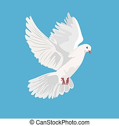 dove, pigeon, vector illustration