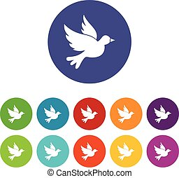 Dove set icons