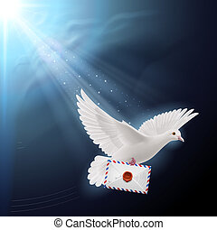 Dove white - Pigeon flying with letters in beak on sunlight