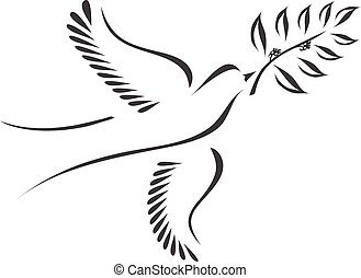 Dove with olive branch stylized vector