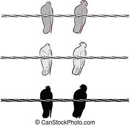 doves, провод, два