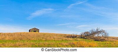 downed, drzewo, pagórek, stodoła