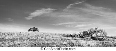 downed, stodoła, drzewo, b&w, pagórek