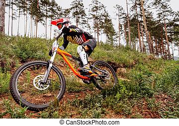 downhill mountain biker on forest trail