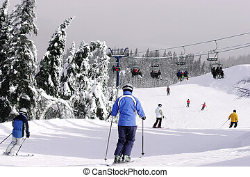Downhill Skiing - Several People are skiing downhill.