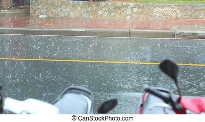Downpour - Rain pouring down on the asphalt road