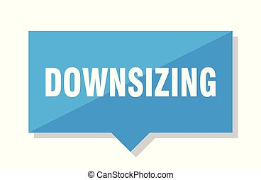 downsizing price tag - downsizing blue square price tag