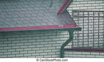 Downspout and pouring water on the roof in the rain