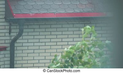 Downspout and pouring water on the sloping roof in the rain...