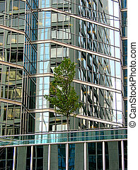 Downtown reflections 7