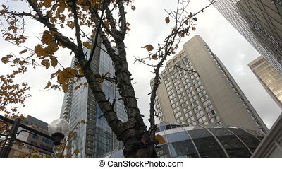 Downtown Vancouver tall office buildings