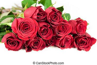 doze, branca, experiência., rosas vermelhas