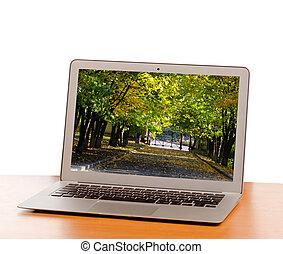 draagbare computer, met, beeld, van, treelined, straat