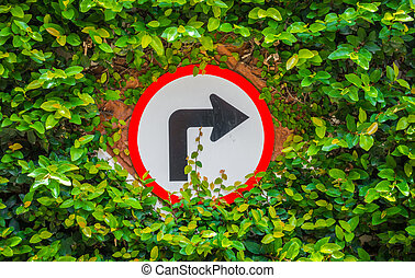 draaien, rechts, blad, groene, meldingsbord