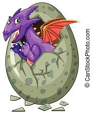 draak, ei, komt, uit